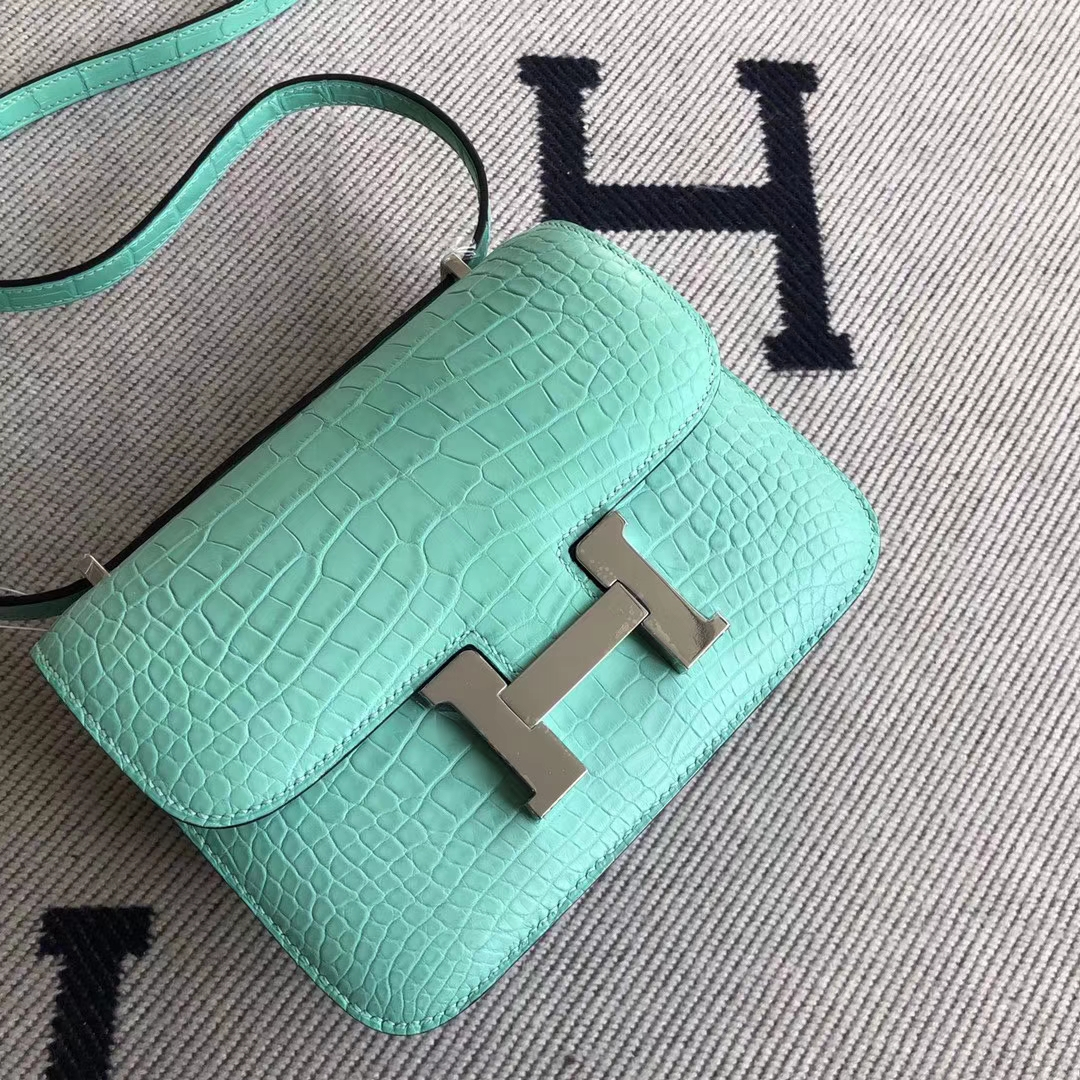 Customize Hermes Alligator Crocodile Constance19CM Bag 6U Mint Green Silver Hardware