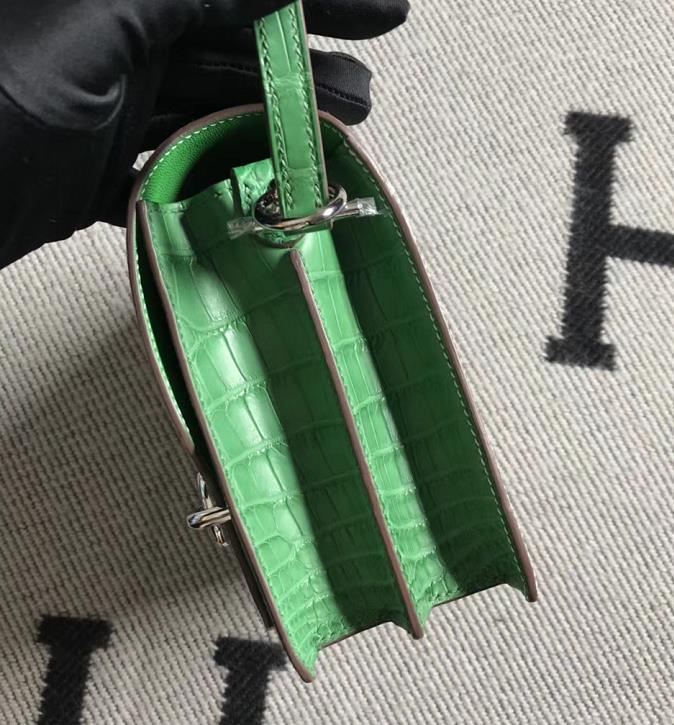 Stock Hermes 01 Nature Lizard & Vert Cacti Crocodile Matt Roulis Bag18CM Silver Hardware
