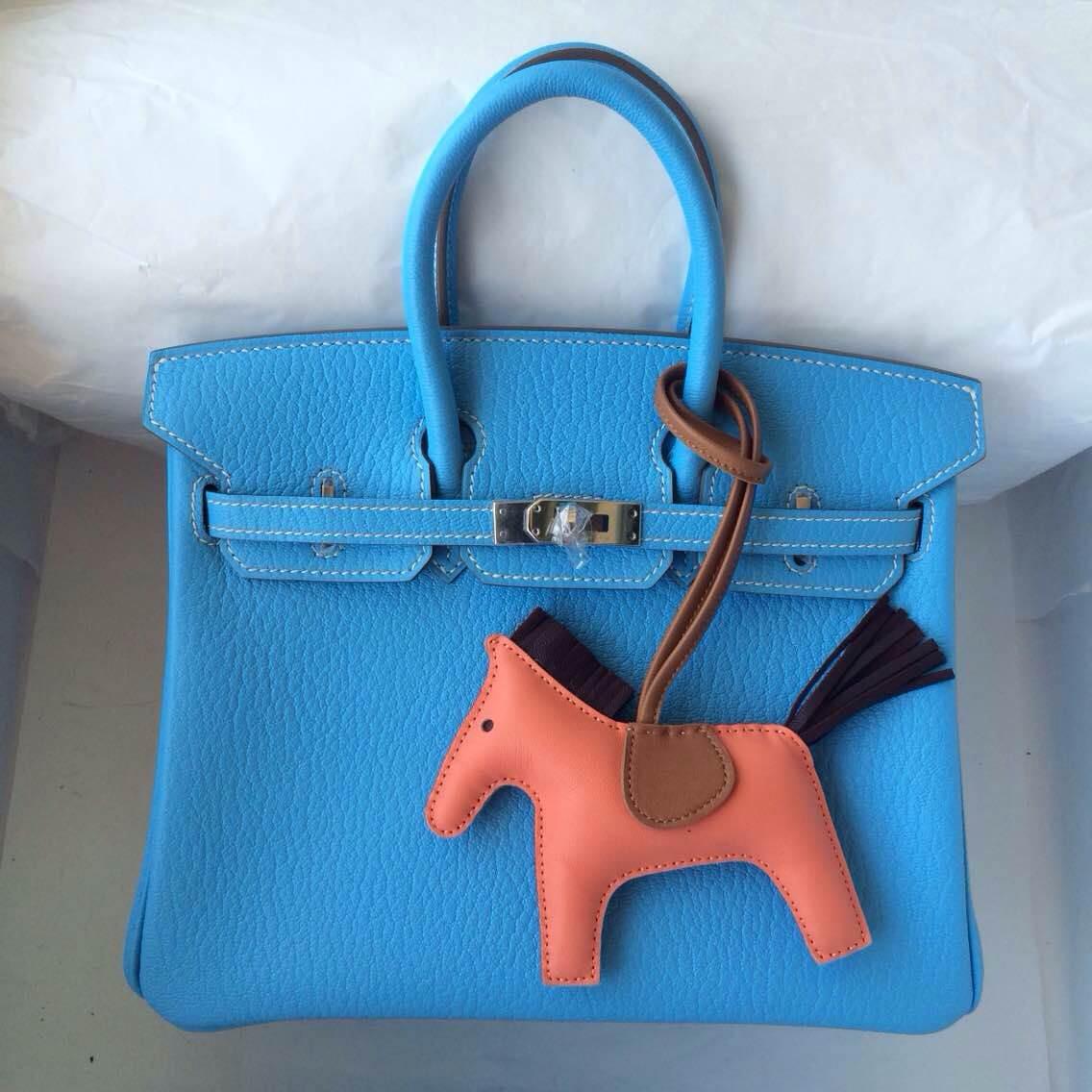 25cm Birkin Bag 7N Blue Paradise Color France Chevre Leather Silver Hardware