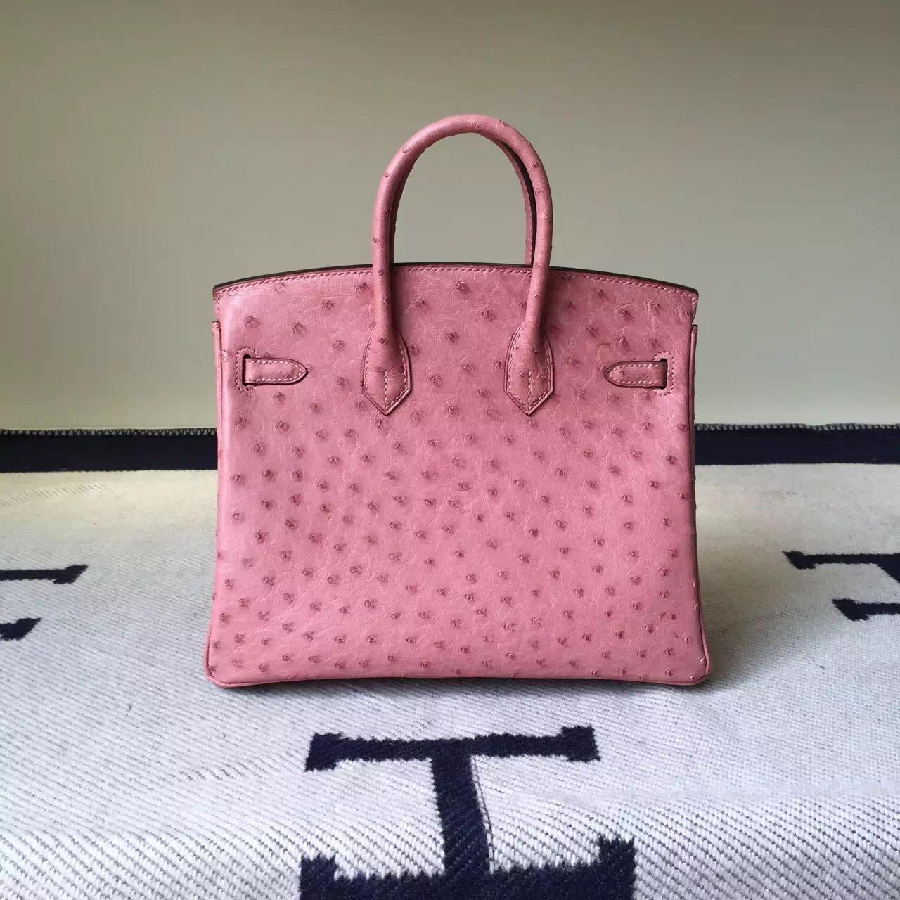 Discount Hermes Ostrich Leather Birkin Bag25cm in CC94 Terre Cuite