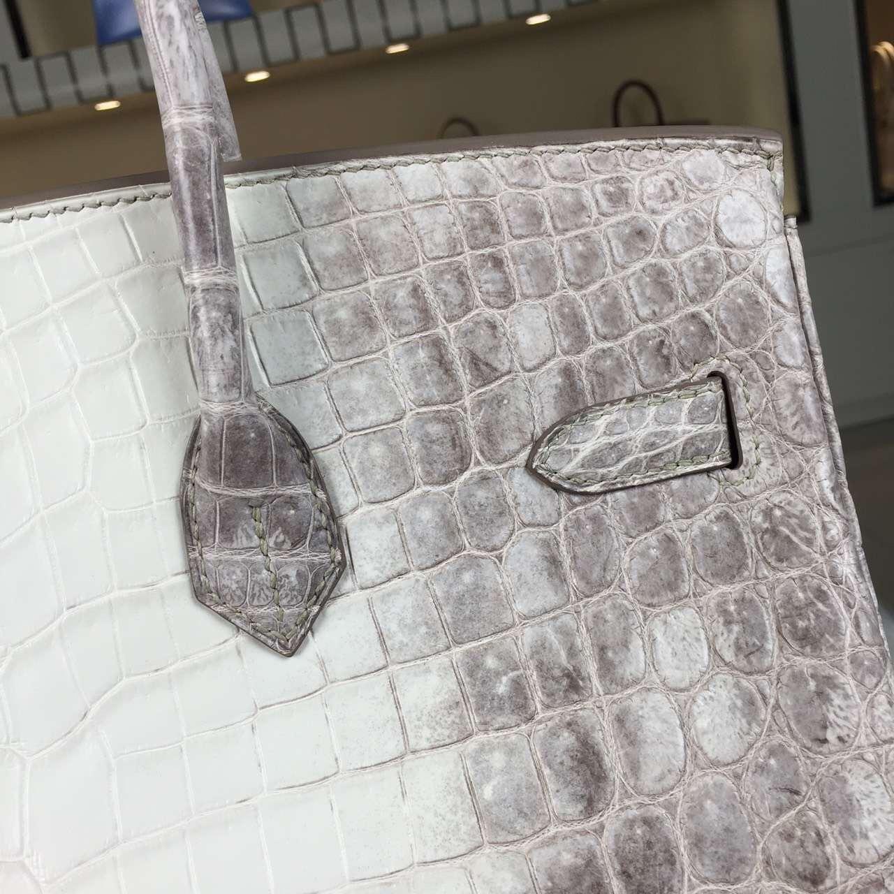 Luxury Ladies' Handbag Hermes Himalaya HCP Crocodile Leather Birkin35CM