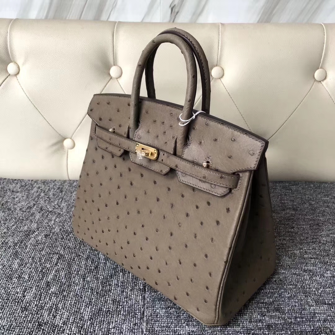 Stock Hermes Ostrich Leather Birkin Bag25cm in CK18 Gris Etoupe Gold Hardware