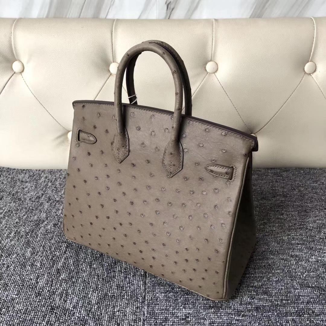 Stock Hermes Ostrich Leather Birkin Bag25cm in CK18 Gris Etoupe Gold Hardware