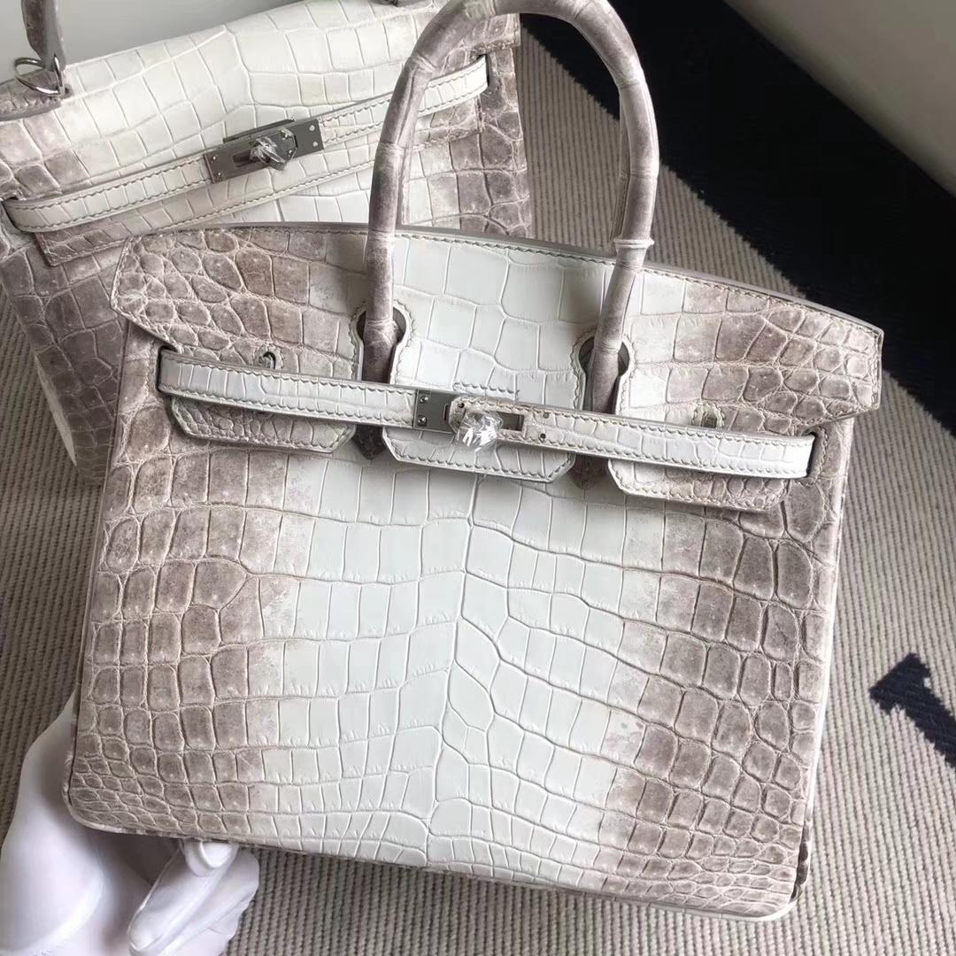 Noble Hermes Himalaya CrocodileLeather Birkin25CM Tote Bag Silver Hardware