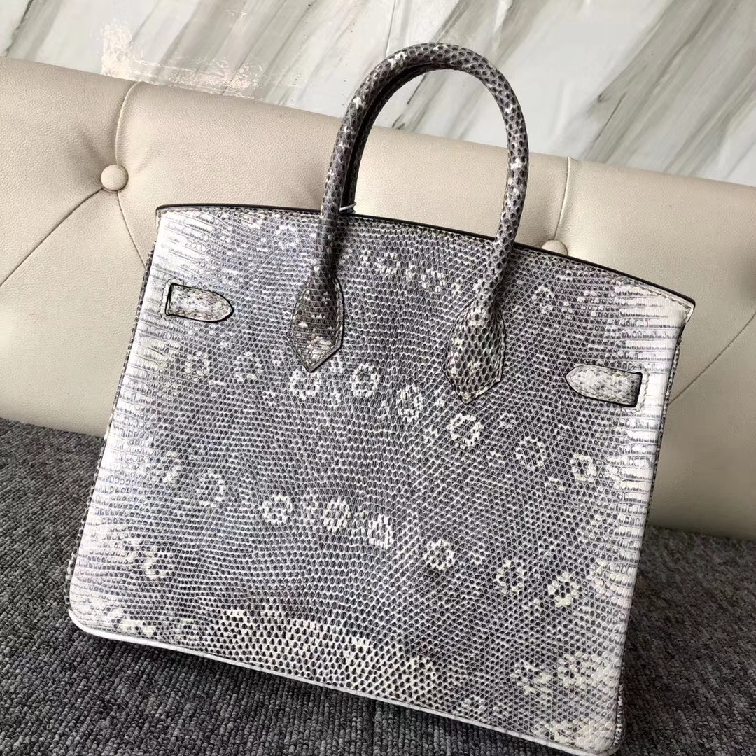 Discount Hermes Nature Color Lizard Leather Birkin25CM Tote Bag Silver Hardware