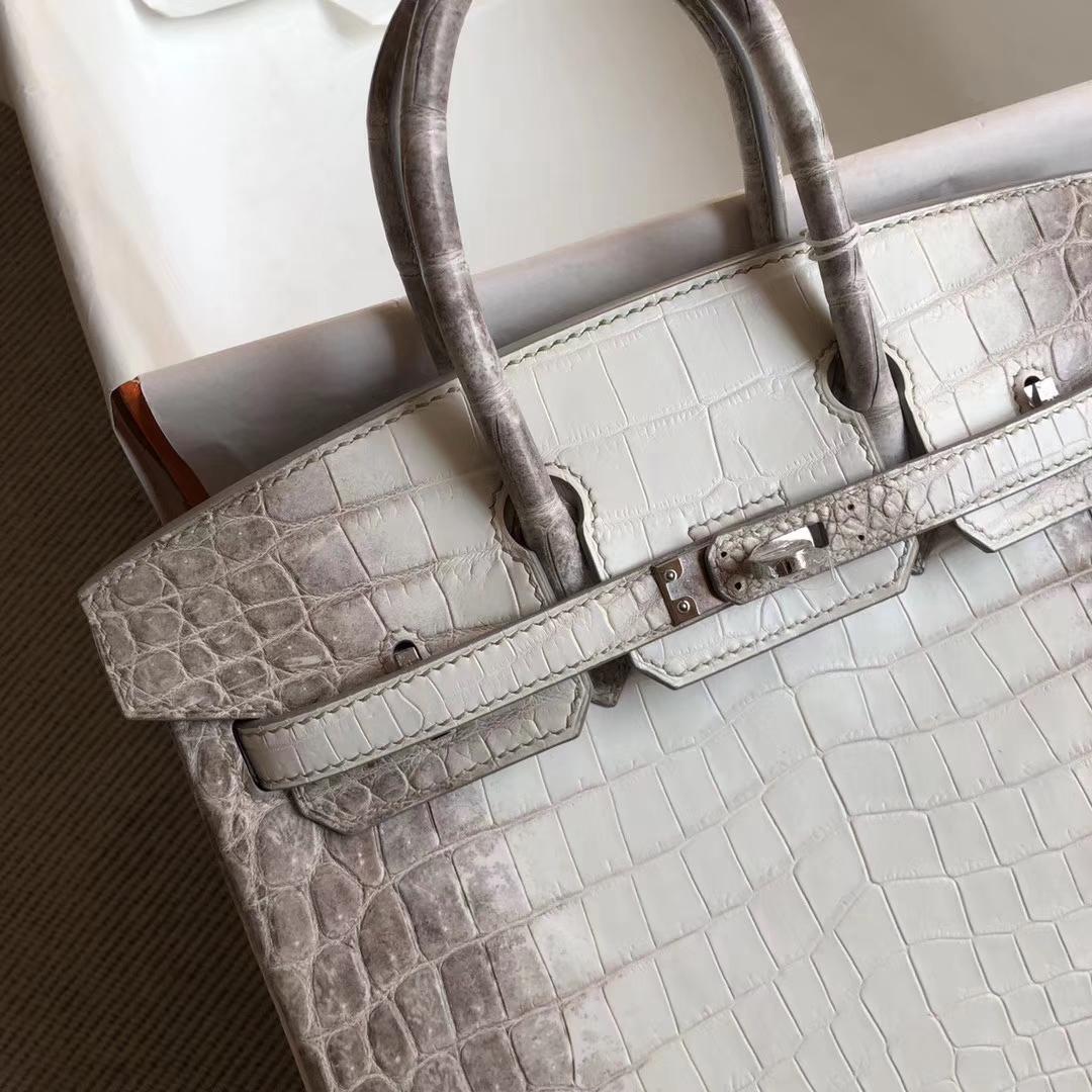 Elegant Hermes Himalaya Crocodile Leather Birkin Bag25cm Silver Hardware