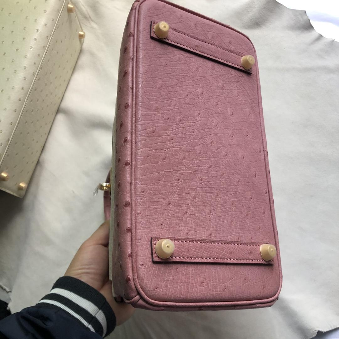 Pretty Hermes Ostrich Birkin Bag25CM CC94 Terre Cuite Gold Hardware