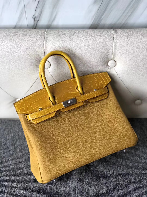 Hermes 9D Ambre Togo Calf/Shiny Crocodile Touch Birkin25cm Bag Silver Hardware