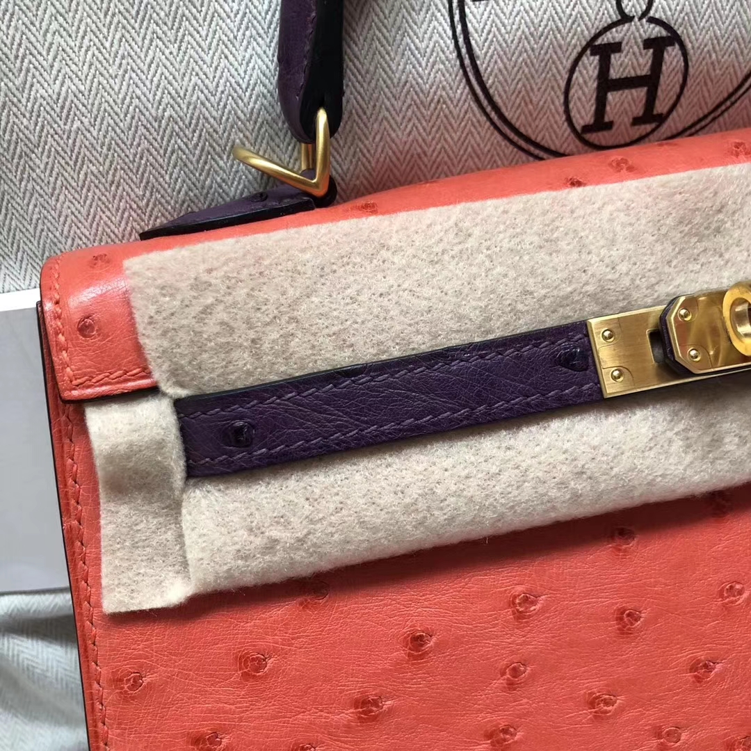 Pretty Hermes A5 Bougainvillier Red/9W Crocus Purple Ostrich Leather Kelly25CM Bag