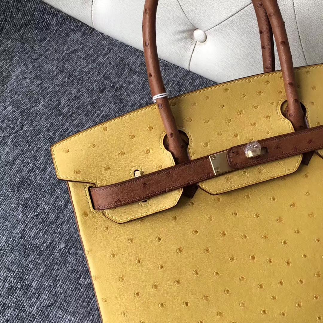 Fashion Hermes 9D Ambre/CK37 Gold Ostrich Birkin Bag30CM Gold Hardware